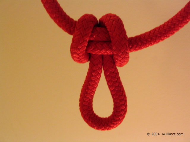 Butterfly Knot -- I Will Knot!
